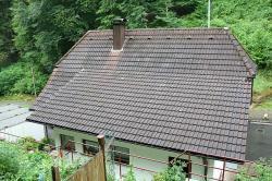 Dach im Urzustand