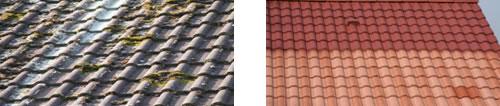 Beispiel Dach vor der Reinigung und nach der Reinigung